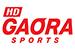 HD GAORA SPORTS